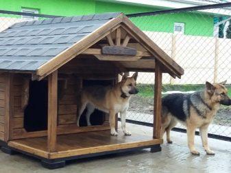 Инфракрасный обогреватель в собачью будку