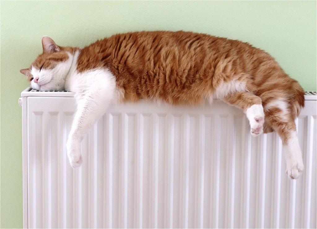 Современный радиатор