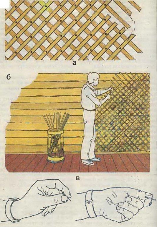 рисунок порядка набивки дранки