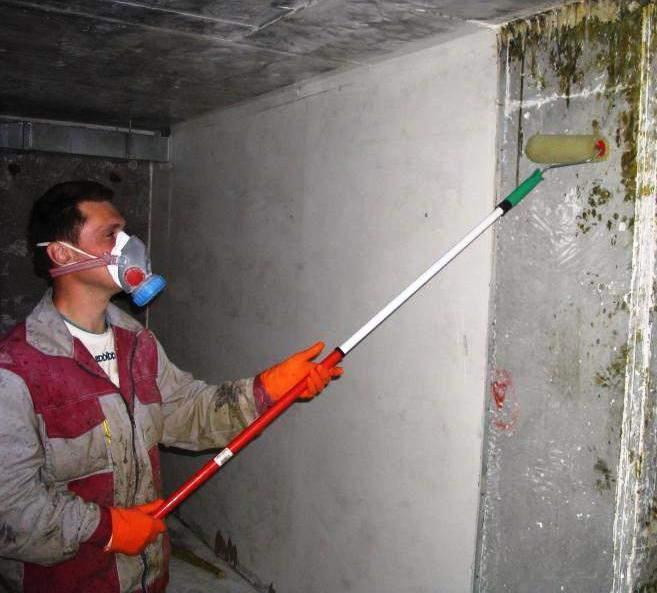 Обработка стен антисептиком
