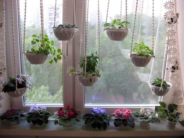 Как повесить цветок на окне