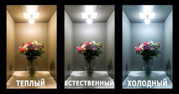 Цветы под разным светом, выглядят по разному