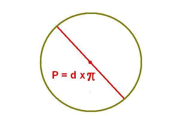Рассчитываем периметр круга