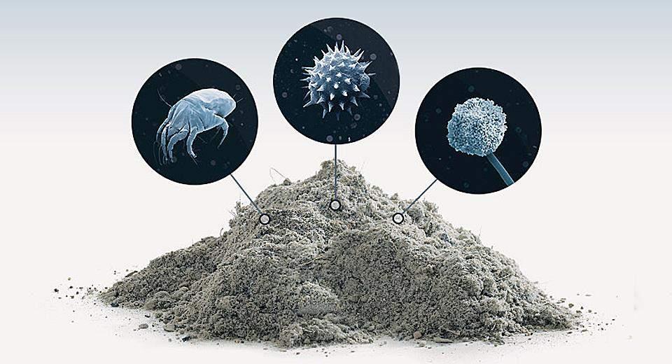 Сухой воздух способствует распространению пыли