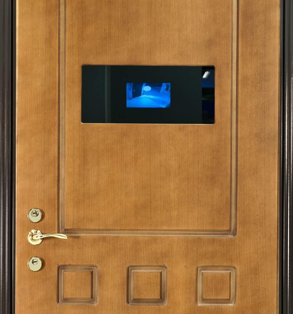 Дверь с видеонаблюдением