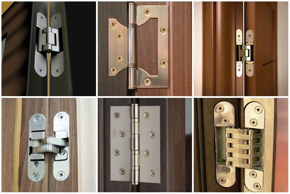 Разнообразие петель для входных дверей