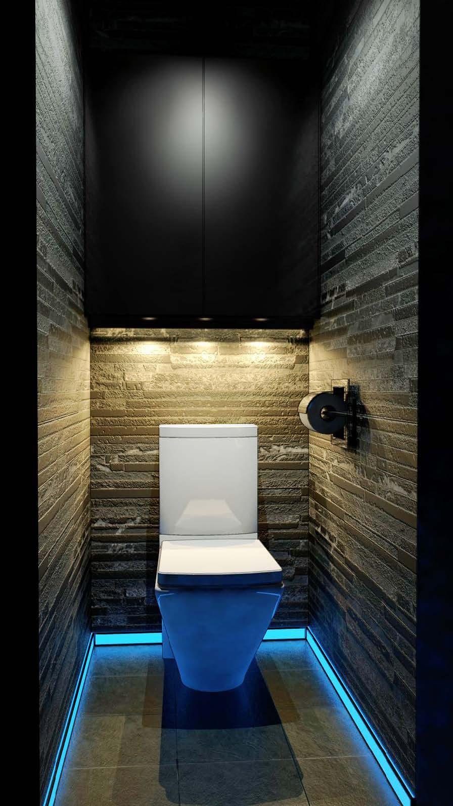 Фото и дизайн туалета в квартире
