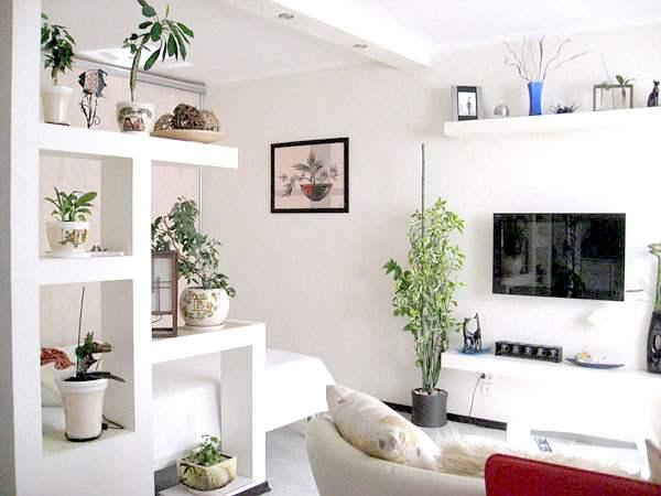 Полочки из ГКЛ с цветами, разделяющие комнату на зоны