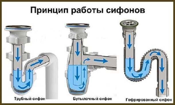 Принцип работы и назначение сифонов: слив воды и создание гидрозатвора